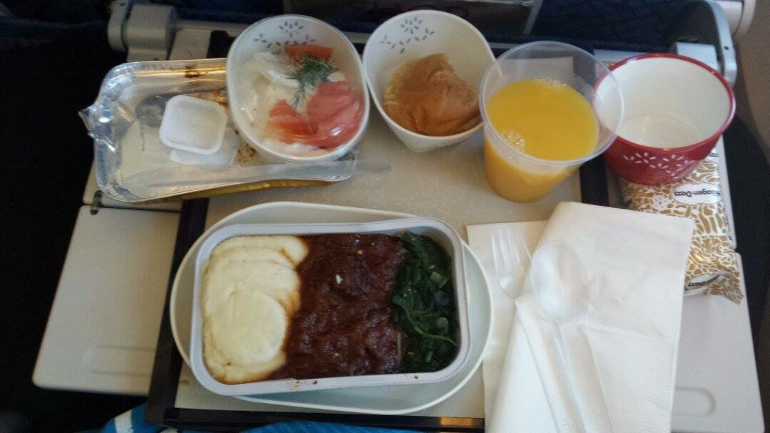Food in the Plane 1