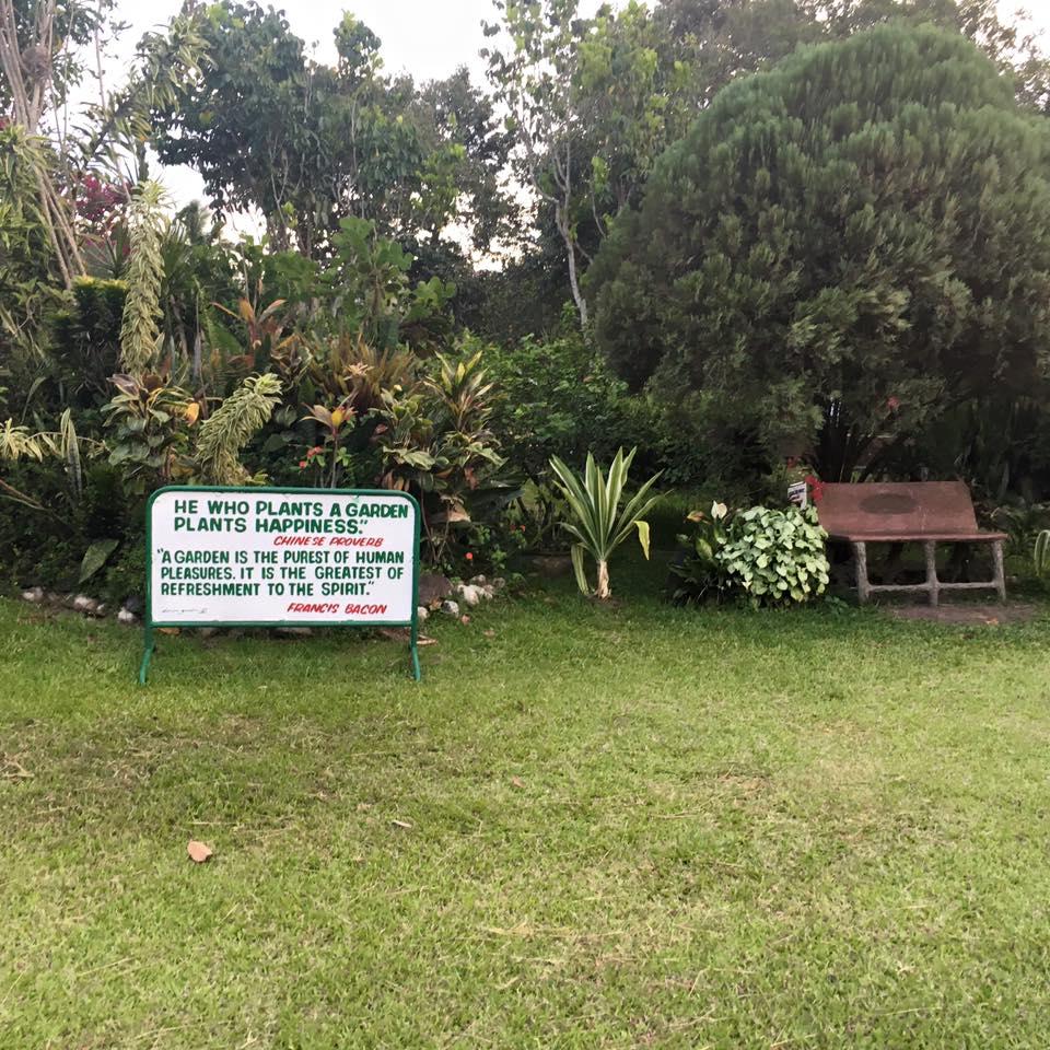durian-garden21